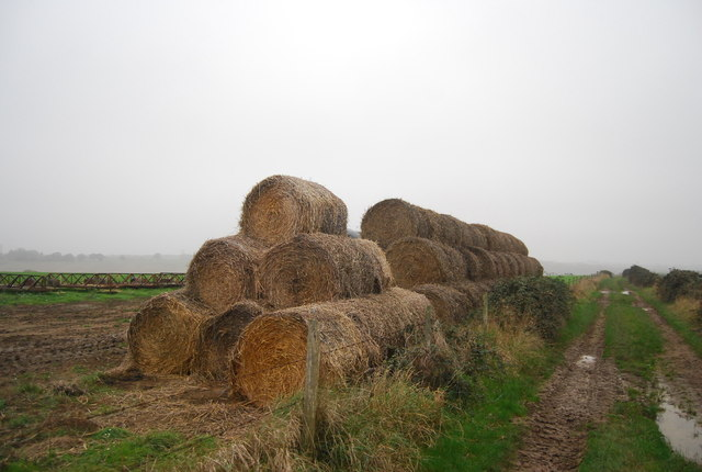 Hay bales by the footpath