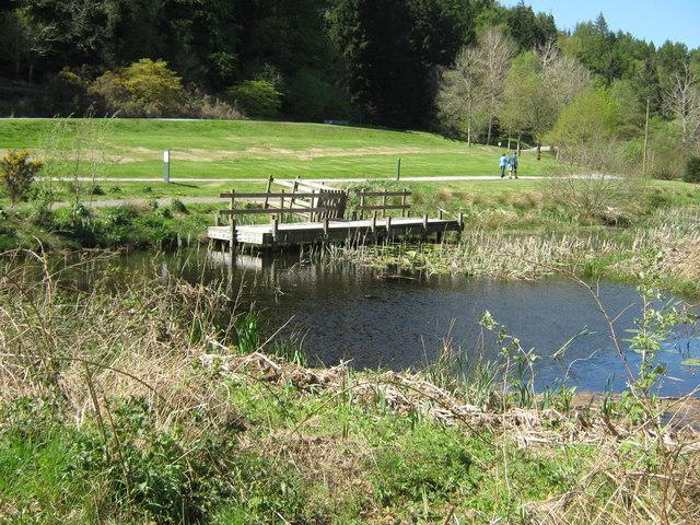 Small pond and observation platform