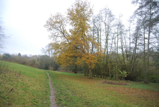 Autumnal colours, Loose Valley
