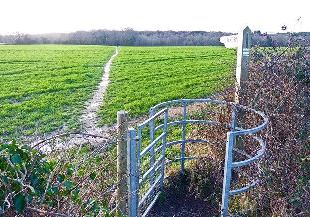 Footpath at Downton