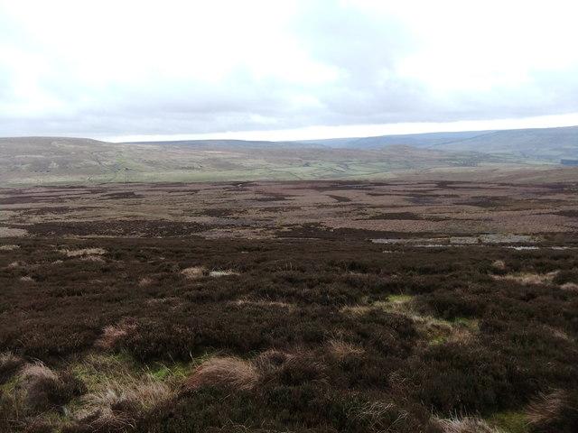 Faggergill Moor