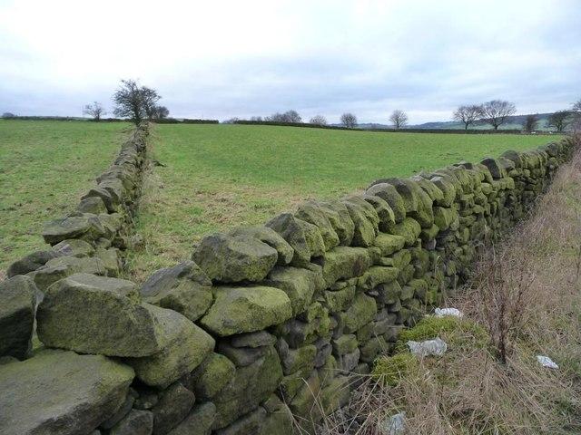 Green fields, green walls