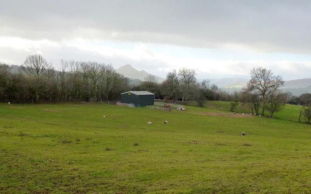 New farm building near The Haven