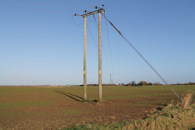 Electricity Poles off Soulby Lane