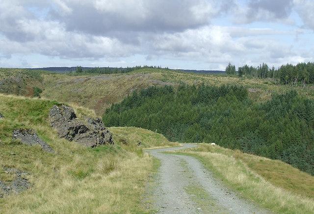 Forestry road descending towards Soar-y-Mynydd, Ceredigion