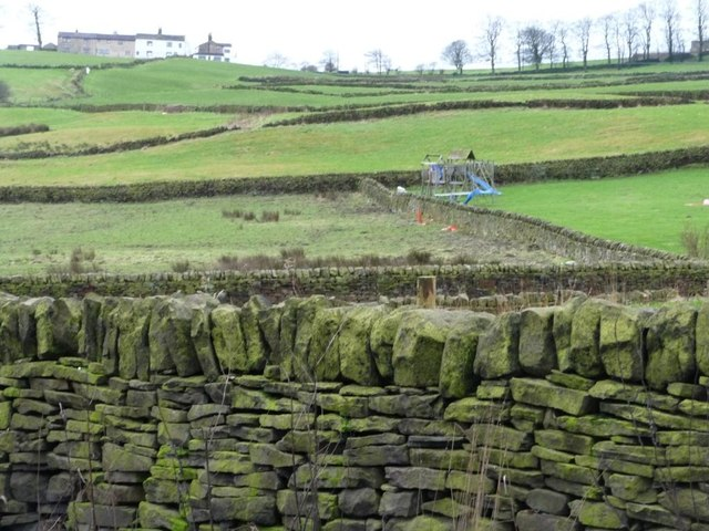 Dry stone wall patchwork off Prune Park Lane