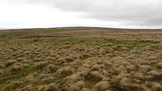 Southern Pentland moorland