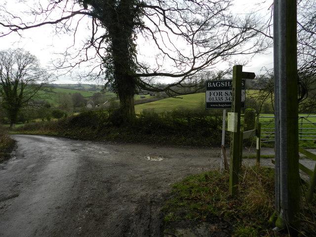 Winn Lane