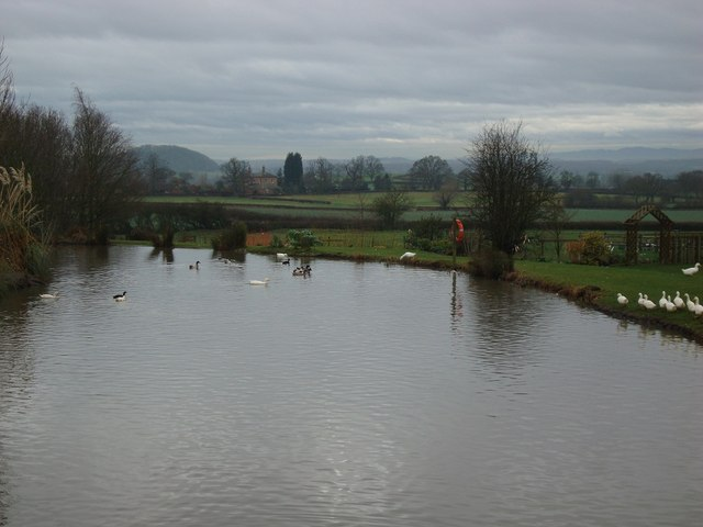 Pond at the Jinney Ring