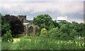 SJ5882 : All Saints' Church, Daresbury by Jeff Buck