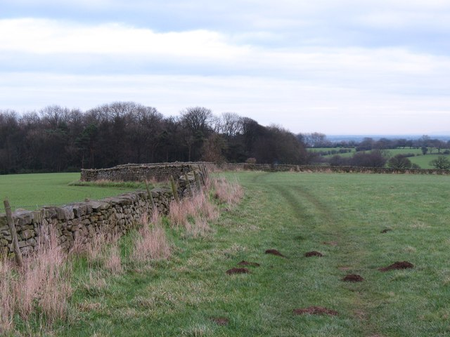 Footpath near Kirkby Overblow