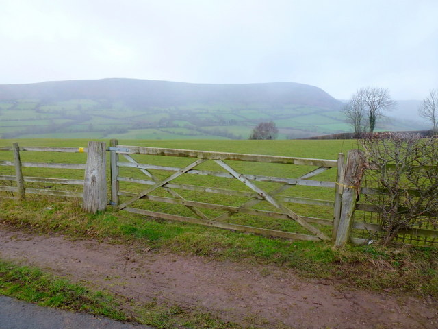 View to Hatterrall Hill