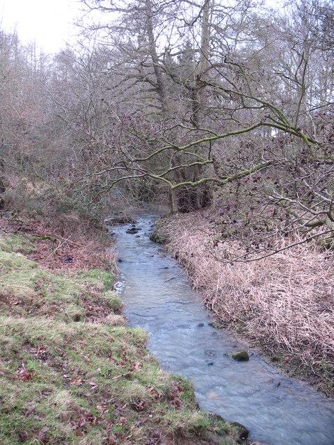 Unnamed beck, Lodge Wood