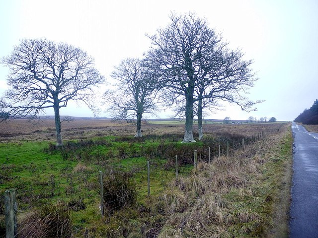 Site of former smithy, east of Harwood Head