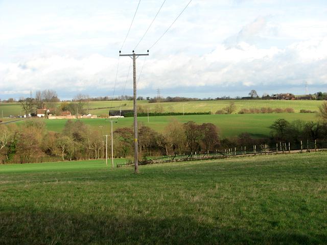 Telegraph poles south of Thorpe's Hill, Hintlesham