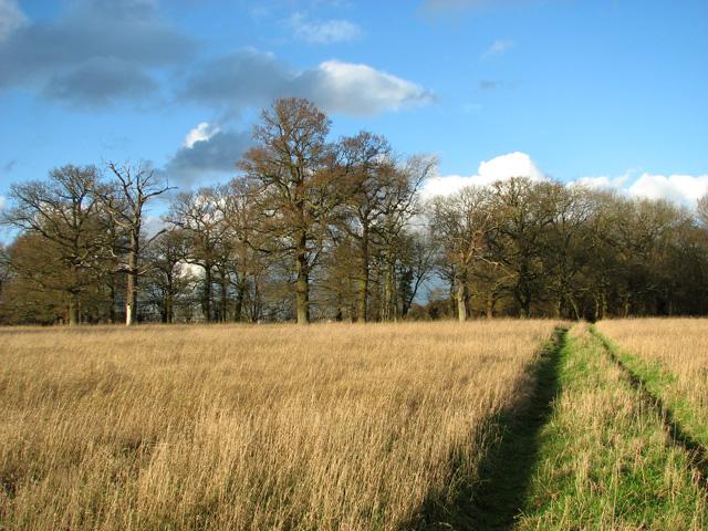 Disused footpath past Round Wood, Burstall