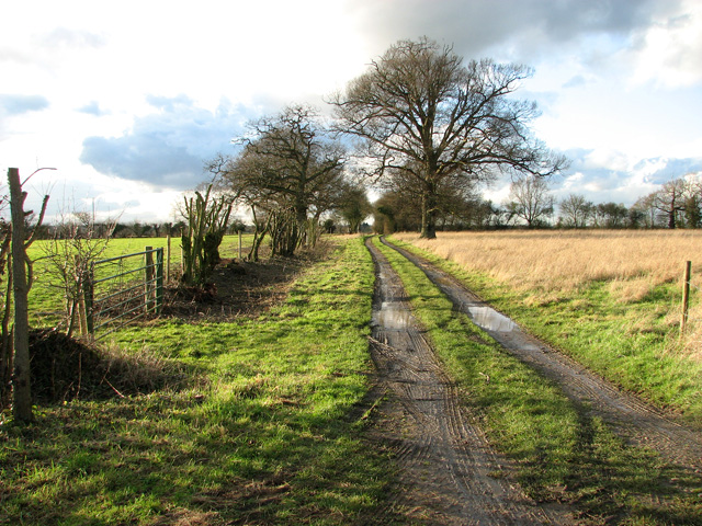 Public footpath to Orchard Lands, Burstall