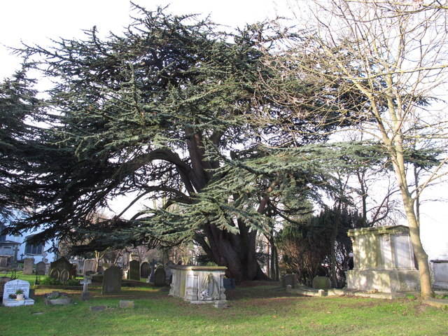 The Church of St. Mary, Church End, NW4 - graveyard