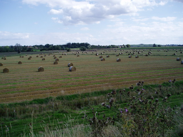 Harvested fields at Sutton Gault, Cambridgeshire