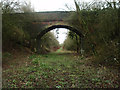 SP9752 : Farm and field access bridge over the old Bedford - Northampton railway line by Michael Trolove