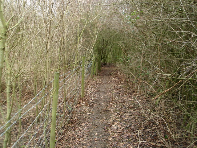 Footpath near the railway line at Turvey