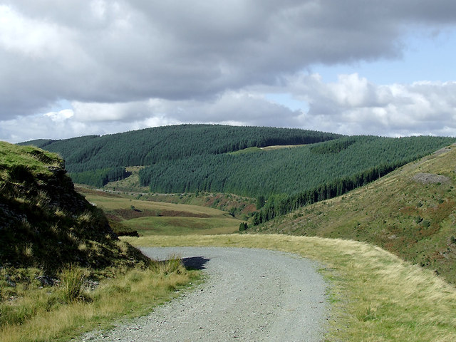 Forestry road and Tywi Forest in Ceredigion