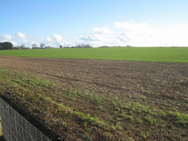 Farmland west of Basingstoke