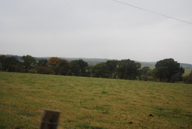 Farmland and hedge