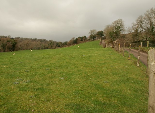 Sheep pasture on Woodhouse Hill