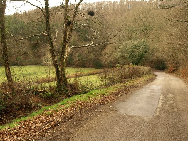 Lane at Van Diemen's Land