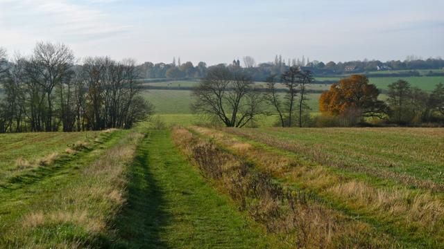 Bridleway to Sissinghurst Castle off Digdog Lane