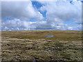 NN4287 : Plateau east of summit of Creag Meagaidh by Trevor Littlewood
