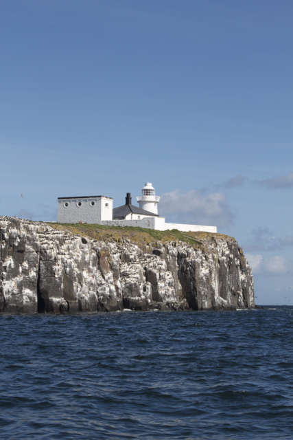 Inner Farne Lighthouse and Cliff