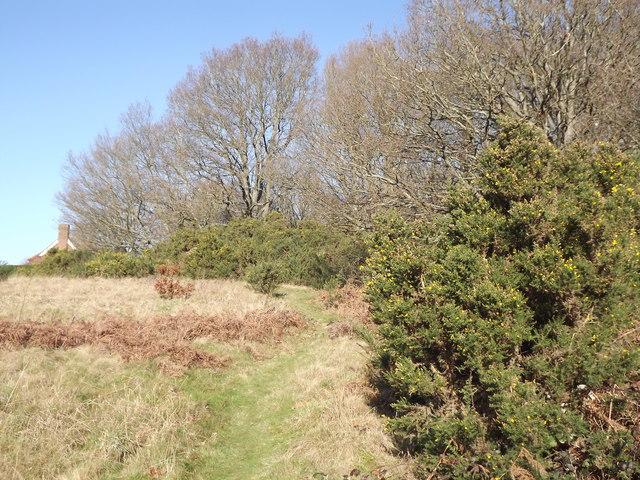 Smithwood Common