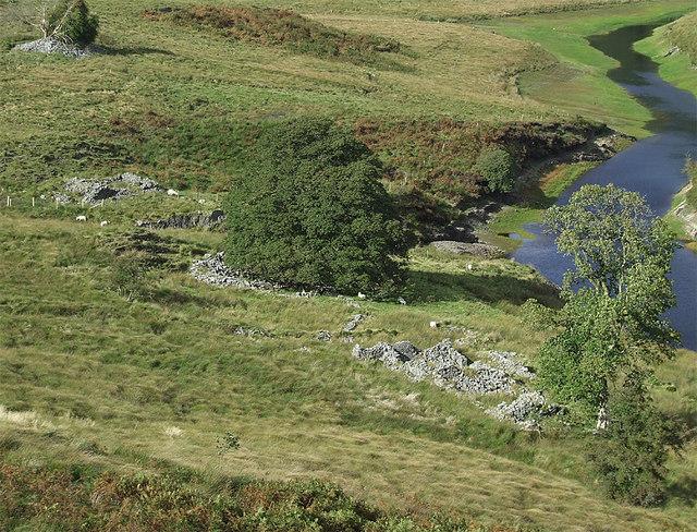 Ruined farm south-east of Soar-y-Mynydd, Ceredigion