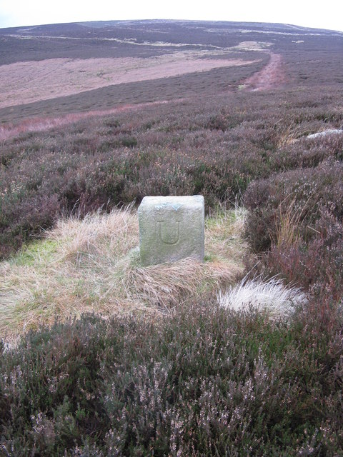 Boundary stone on Round Hill with Curlethney Hill in the background