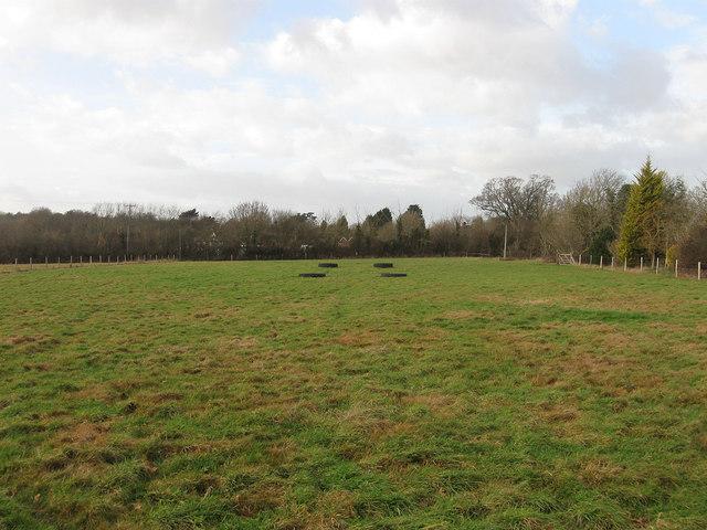 House Meadow (1)