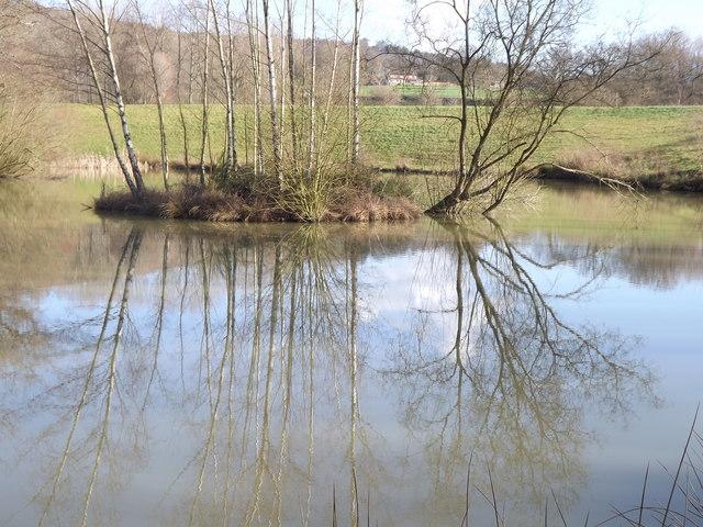 Willinghurst Estate Fisheries