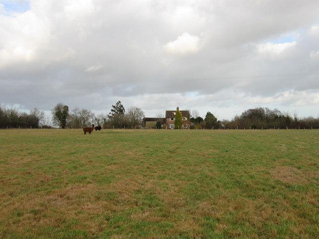 House Meadow (2)