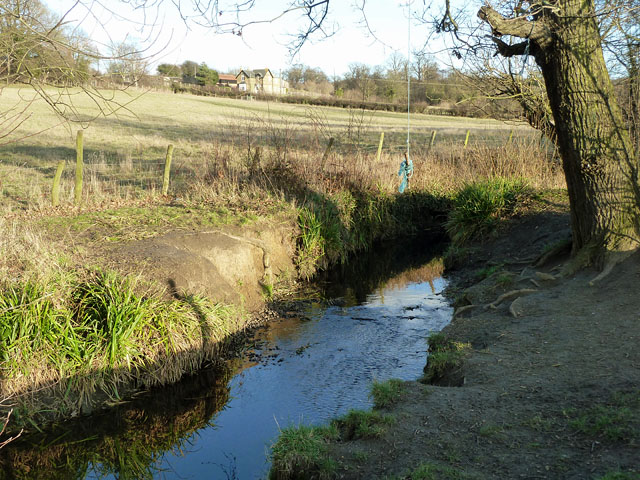 A swinging place on the Kyd Brook