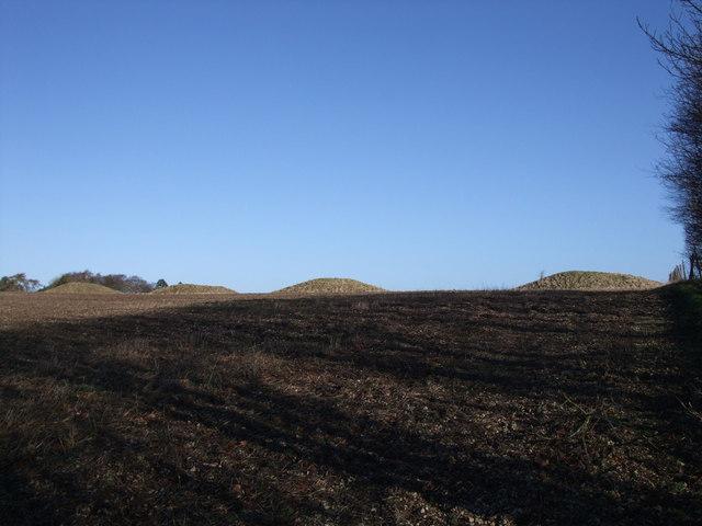 Four Barrows, near Aldbourne