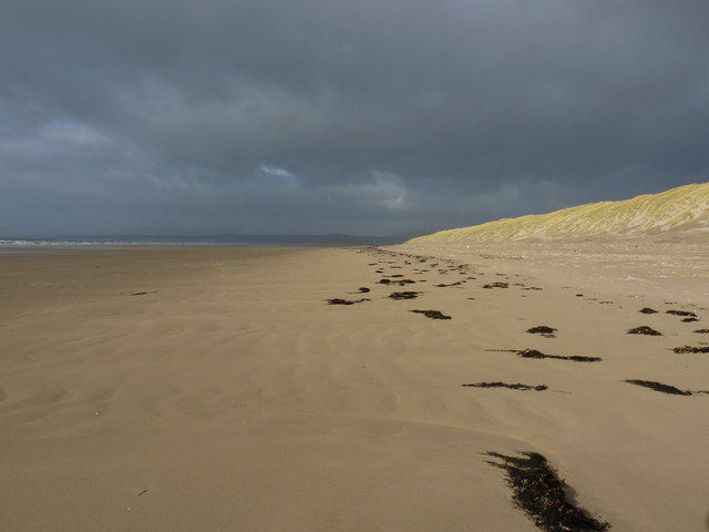 Winter sunshine on the dunes