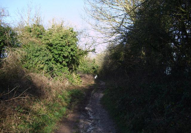Bridleway northwest out of Aldbourne