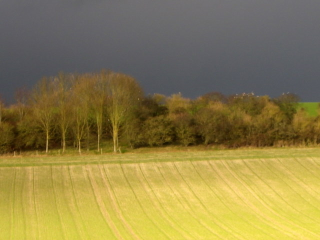 A storm is brewing, Bishopstone