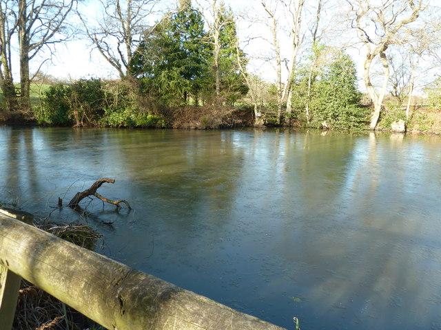 Nice pond, bad timing