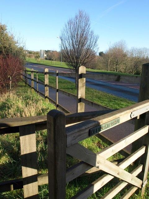 Gate at Millennium Green, St Marychurch