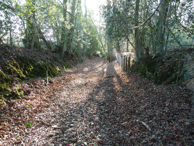Footpath south through Anchor Wood