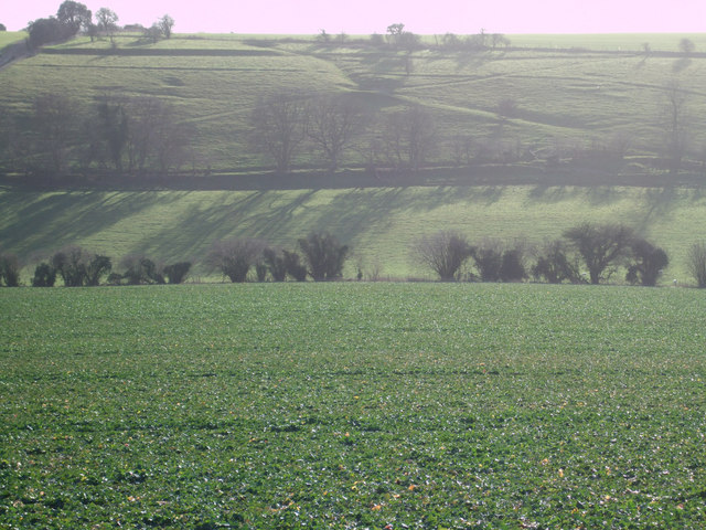 Field system east of Snap