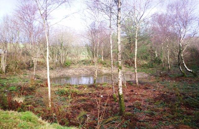 Claypits Pond, Llanteg