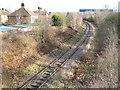 TL1896 : Fletton Branch Railway (1) by Nigel Cox